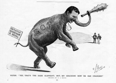 Theodore Roosevelt As Republican Elephant Carrying His Big Stick Referendum