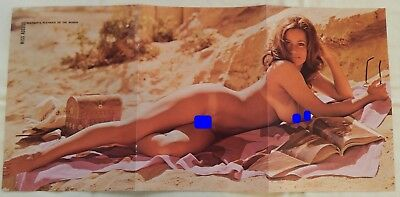 Linda Summers August 1972 Playboy Centerfold Pin Up Poster