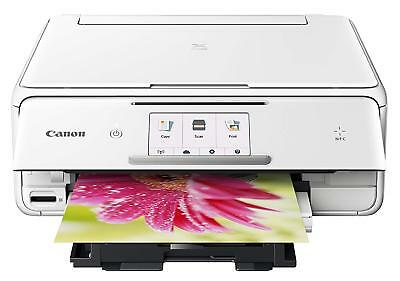 Brown Canon PIXMA TS8020 Wireless Inkjet All-in-One Printer #1369C062