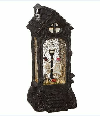 "Raz 11.5"" Lighted Skeleton Spinning Water Globe Glittered Halloween Lantern"