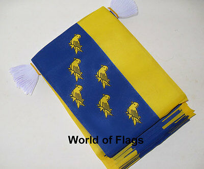 WESSEX BUNTING 9m 30 Gold Wyvern Dragon Flag Flags England English County