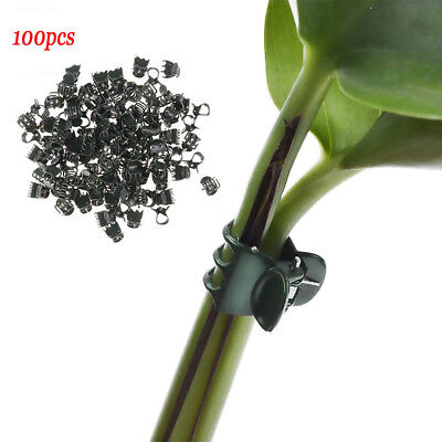 100Pcs Plastic Stem Clips Plant Support Orchid Garden Tools Flower Grow Upright