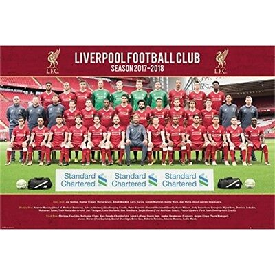 Gb Eye Ltd Liverpool, Team Photo 17/18, Maxi Poster 61x91.5cm, Wood, Various, -