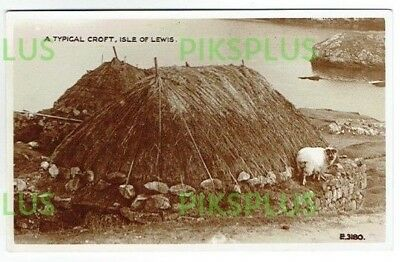 Old Scottish Island Postcard A Typical Croft Isle Of Lewis Scotland Real Photo