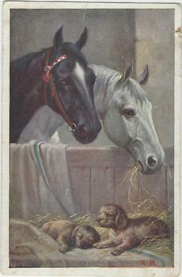 Horse Postcard - Kohn -Black and Grey with puppies in stable - Latvian