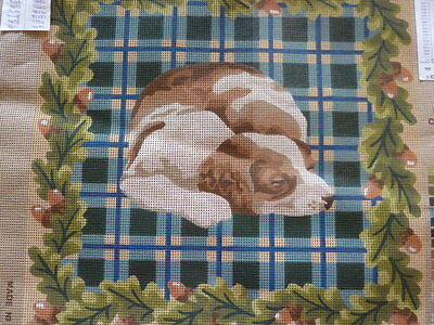 Dmc Printed Tapestry Canvas Epagneul Spaniel 40 * 40 Cms Laine Colbert (Cushion)