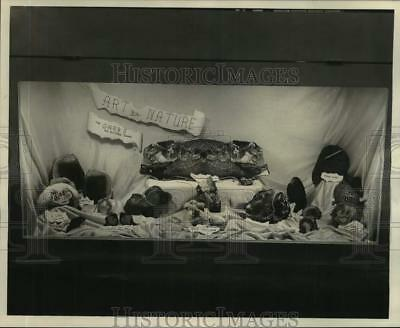 1967 Press Photo Objects formed by nature at 3rd Annual Dixieland Gem & Mineral