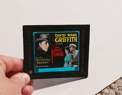 """1920 """"The Love Flower"""" DW Griffith MOVIE AD glass slide"""