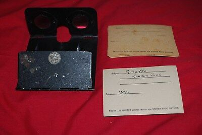 Rare Folding Metal Stereo Viewer By Thornton Pickard + 1 Stereo Picture +Mounts