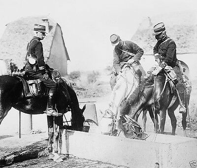 French officers water their horses at a trough 1914 World War I 8x10 Photo