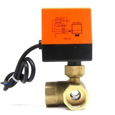 Electrical Motorized Ball Valve DN15/20/25/32 AC 220V 2 Way 3 Wire Brass Copper