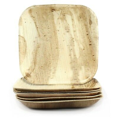Natural Areca Palm Leaf Plates Small Square 6 Biodegradable Eco-Friendly Party