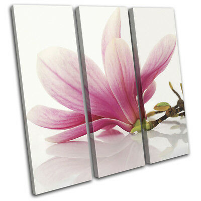 Pink Flowers Contemporary Modern Floral TREBLE CANVAS WALL ART Picture Print
