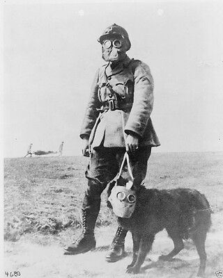 French Soldier and Dog both wearing gas masks New World War I WWI 8x10 Photo