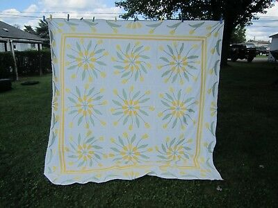 "Vintage Applique Ivory w/Yellow Tulips 80"" Square QUILT TOP"