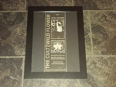 The Cult-Wild flower-1987 original poster sized advert framed