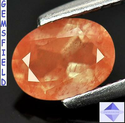 VS !!! 1.29ct  !!! ANDESINE d'AFGHANISTAN - Lumineux orange rosé - poli AAA++