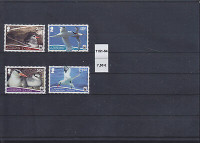 065342 Vögel Birds Ascension 1151-54 ** MNH Year 2011