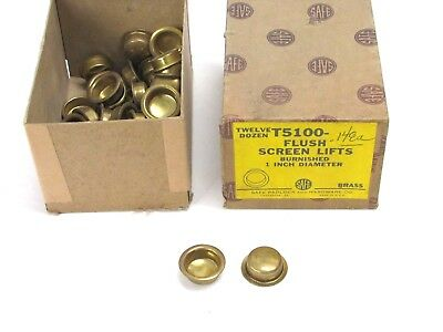 "Nos Vintage Safe Padlock & Hardware 1"" Flush Screen Lifts, Brass, T5100"