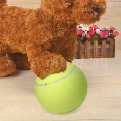 Large Giant Pet Dog Puppy Tennis Ball Thrower Chucker Launcher Play Toy