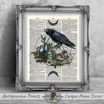 Witchcraft Crow Skull and Potions ART PRINT ON ANTIQUE DICTIONARY BOOK PAGE moon