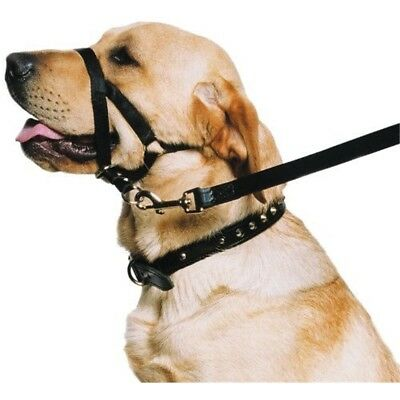 Ancol - Dog Training Halter - Head Collar - Helps Stop Pulling - Size: Small -