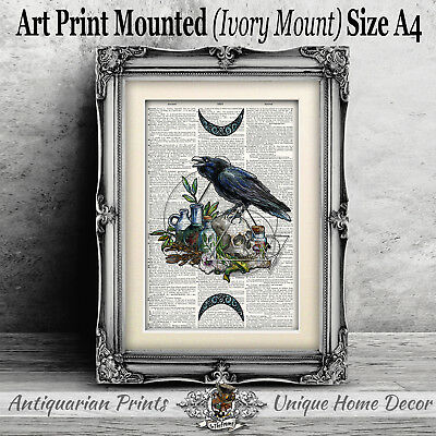 Witchcraft Blue Raven Skull ART PRINT on ANTIQUE DICTIONARY BOOK PAGE Picture