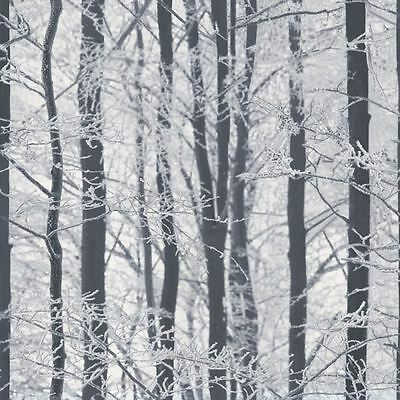 Frosted Wood Wallpaper - Arthouse 670200 Silver Birch Forest