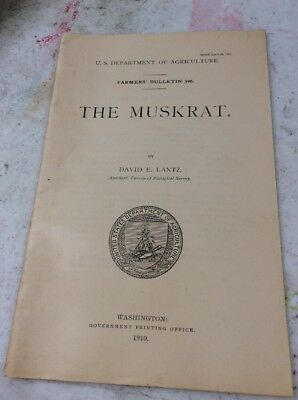 US DEPARTMENT OF AGRICULTURE FARMERS BULLETIN The Muskrat April 1910