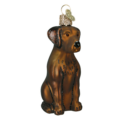 """Chocolate Lab (Labrador)"" (12387)X Old World Christmas Glass Ornament w/OWC Box"