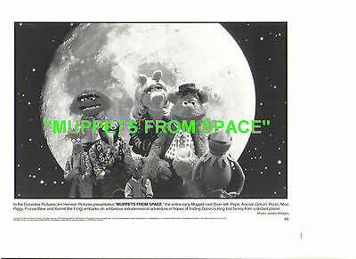 Muppets From Space Kermit The Frog Fozzie Bear Pepe Piggy Gonzo Animal Photo
