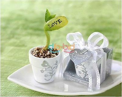 10/20/50 Magic White Bean Seeds Gift Plant Growing Message Word Love Office BAAU