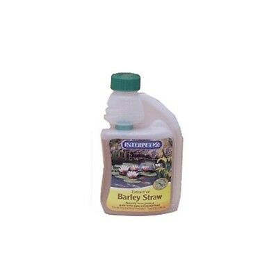 Interpet Ltd Blagdon 250ml Barley Straw Extract - Natural Algae Treatment For -