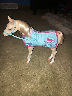 Breyer Horse With Halter and Blanket, Blue, Pink, #1 Foal