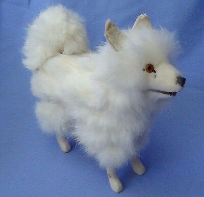SPITZ GROWLER antique toy dog Samoyed Germany French fashion doll companion 7""
