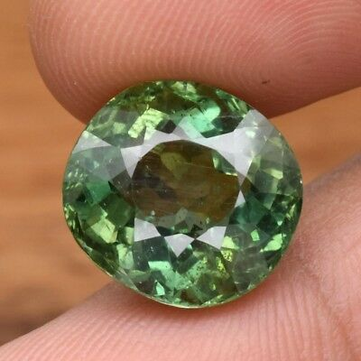12.58ct 14x13mm Oval Natural Unheated Green Apatite, Brazil