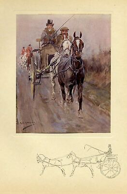 Horses Tandem Two In Hand Coaching Antique 1909 Color Print Whip Harness Equine