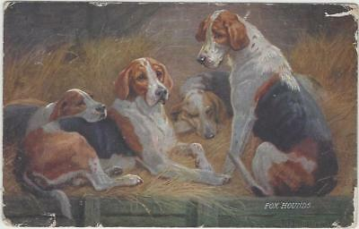 Animal Postcard _TUCK-9381 - FAVOURITE DOGS- FOX HOUNDS- N. DRUMMOND