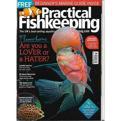 Practical Fishkeeping Magazine November 2018 Issue 11 PFK Mag Flowerhorn Ottos