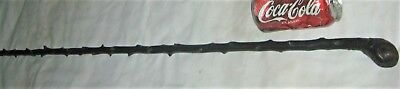 Antique Man Black Irish Shillelagh Thorn Hard Wood Walking Art Stick 918F Brass
