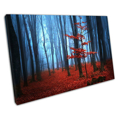 Blue morning Mist Red carpet of leaves with a single Red Tree Canvas X1400