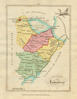 County of Londonderry, Ulster. Antique copperplate map by Scalé / Sayer 1788