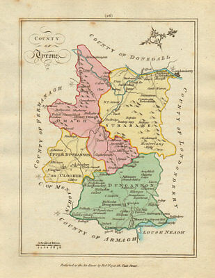 County of Tyrone, Ulster. Antique copperplate map by Scalé / Sayer 1788