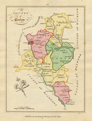 County of Carlow, Leinster. Antique copperplate map by Scalé / Sayer 1788