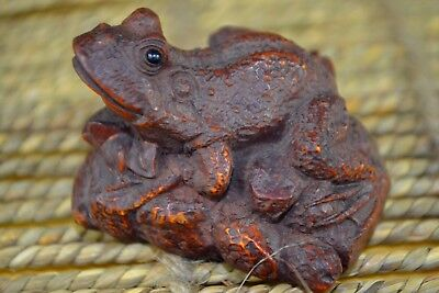 Ancient Rare Japanese Netsuke old Boxwood Handwork toad Collectible Statue