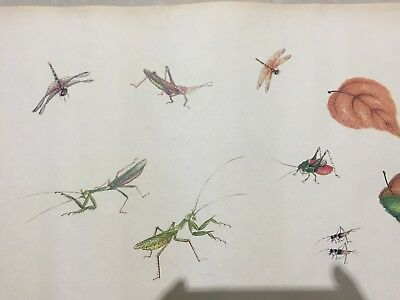 Rare Chinese Famous Artist Qi Baishi Old Handwork Collectible Insects Painting