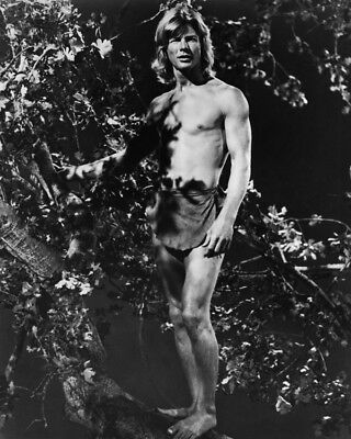 The World's Greatest Athlete Jan-Michael Vincent Bare Chested In Tree 8X10 Photo
