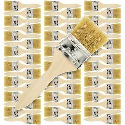 """1/"""" Chip Paint Brushes Stain Glue Adhesive Touchup 720 Pack 1 Inch Lot of 720"""
