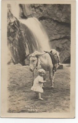 1910 RPPC Postcard of  Adorable Baby and Donkey at 7 Falls South Cheyenne Canyon