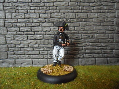 Painted Metal 28mm Perry Miniatures Napoleonic British Naval Officer #2